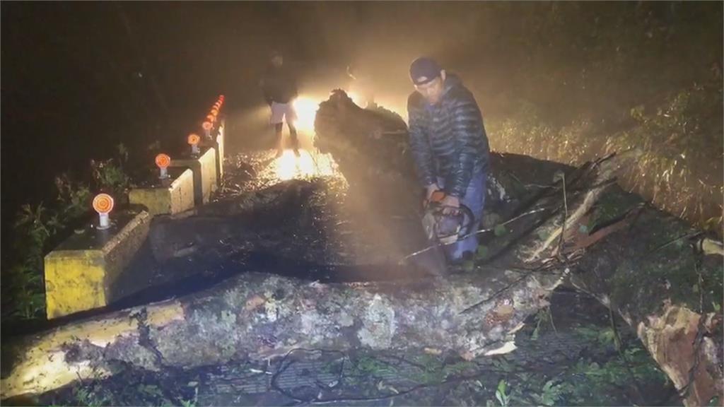 瑞穗巨樹倒塌阻通行 遊客受困警搬樹救援下山