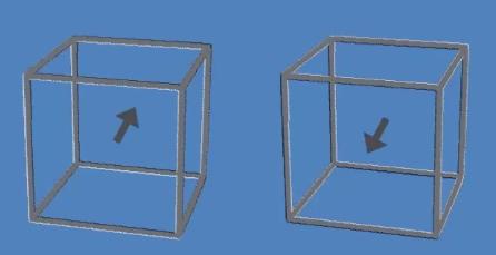 日網友用「2箱子」騙倒眾人!網驚呆:我開始懷疑自己眼睛了