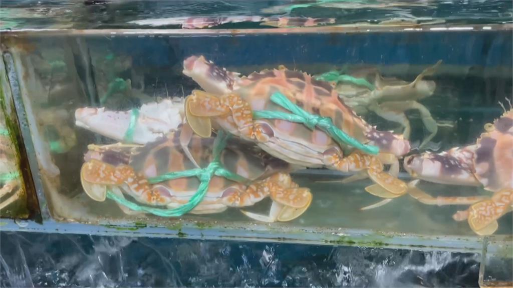 被騙了嗎?南寮漁港點2蟹1魚1菜2340元觀光客嚇跑了... 餐廳喊冤:絕對沒坑人!