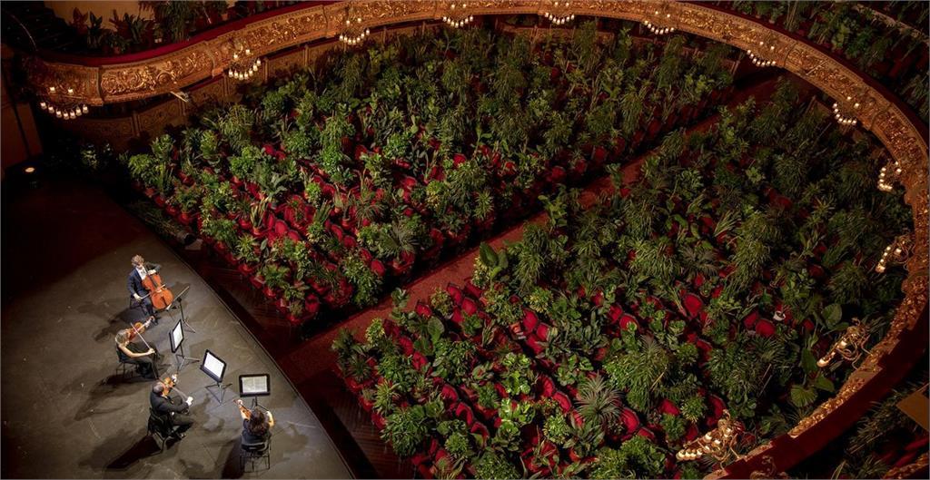 植物上座!巴塞隆納歌劇院「無懼」重啟