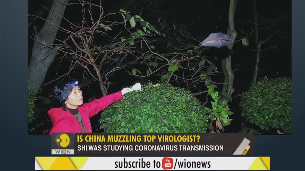 紐時訪中國「蝙蝠女」石正麗自稱不斷遭潑髒水