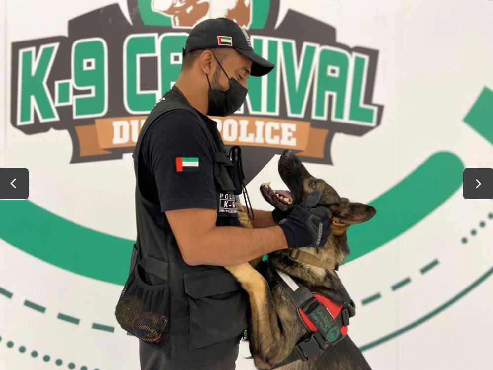 杜拜訓練機場快篩狗狗部隊 聞出確診者準確率達98.2%