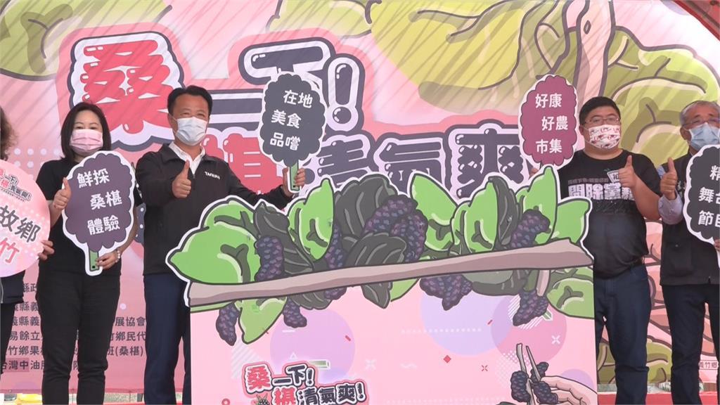 價格10年新低!蔡易餘站台「桑葚季」號召挺農民