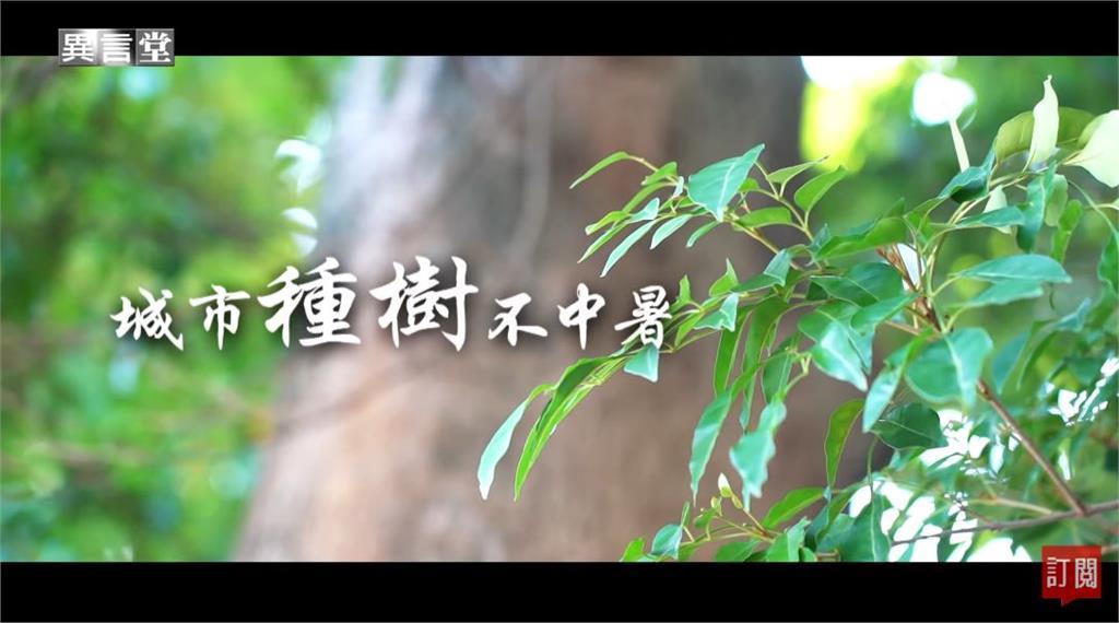 異言堂/秋冬還是很熱!城市種樹才不中暑