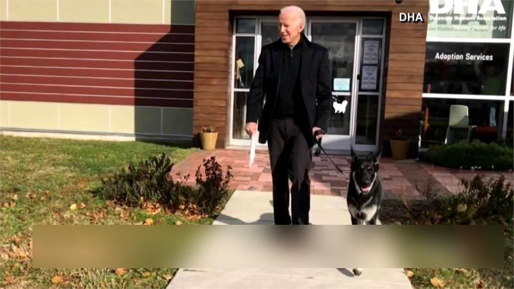 拜登與愛犬玩耍不慎滑倒 扭傷腳踝接受骨科檢查