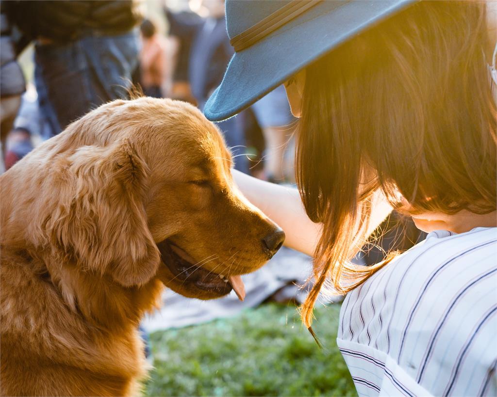 汪星人獲國家保障!德國將立法強制飼主「每天遛狗1小時」