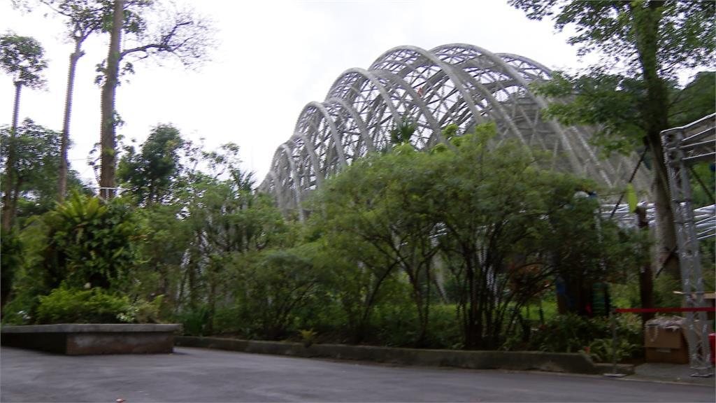 木柵動物園「熱帶雨林」館8日開幕!水豚等新動物陸續亮相