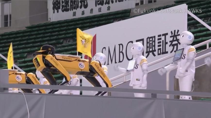 軟銀鷹高科技機器人啦啦隊 球迷眼睛為之一亮