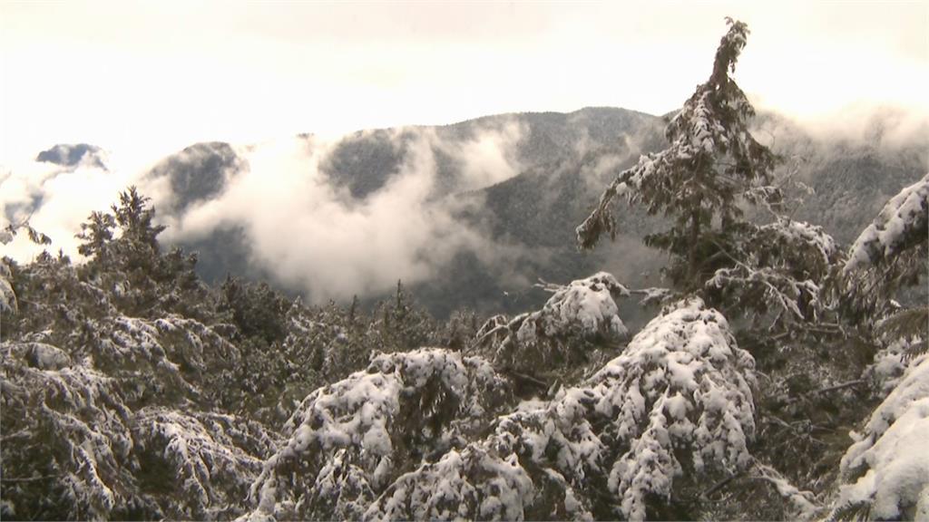 太平山冷到階梯結冰 遊客上山賞雪驚呼好美