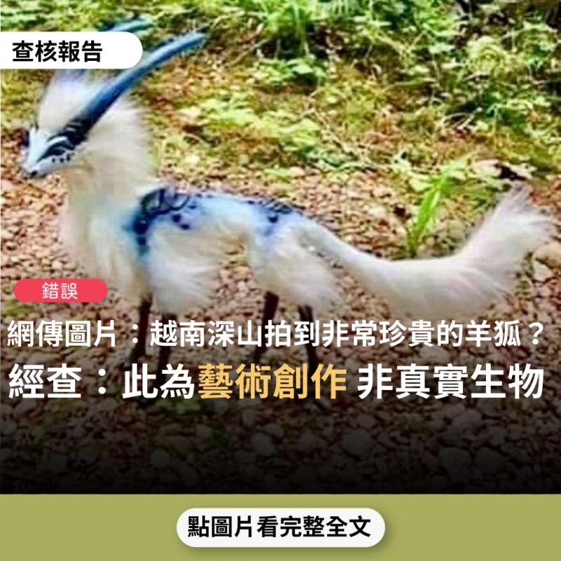 事實查核/【錯誤】網傳照片「這輩子也許從未看過的動物出現越南深山,名叫羊狐」?
