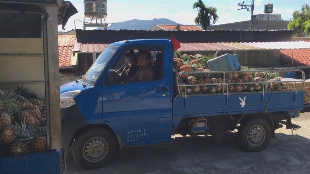 台東鳳梨宅配大塞車 農委會提供平台協助送貨