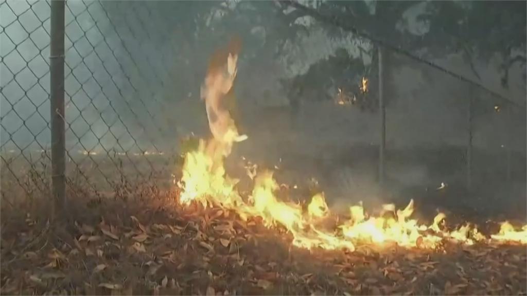 加州野火燒不盡!11個北市大面積燒毀 火場高達560個 17.5萬人撤離家園