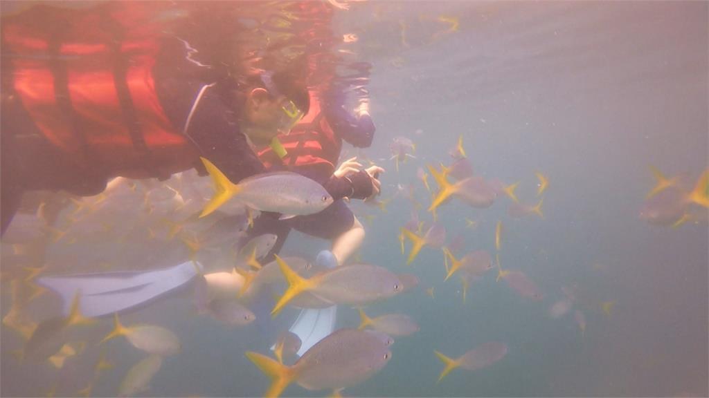 帛琉旅遊泡泡有譜! 需採檢陰性+檢疫5天