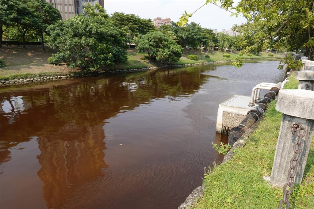 快新聞/高雄愛河變「紅褐色」 環保局:藻類增生影響