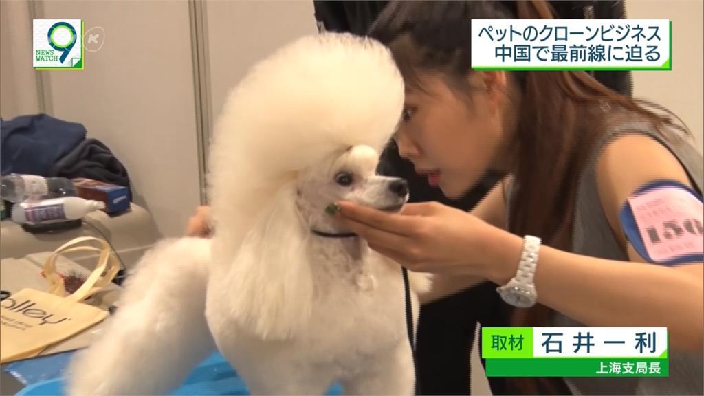 瞄準龐大寵物市場 中國業者推「複製毛小孩」惹議