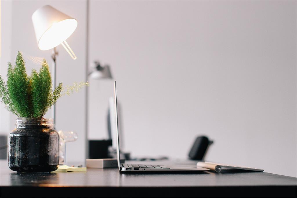 辦公桌面雜亂、擺放綠色植物?小心「犯風水禁忌」前途黑暗