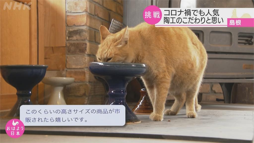 日本70年老窯場拚生機!貓咪專用碗爆搶購潮