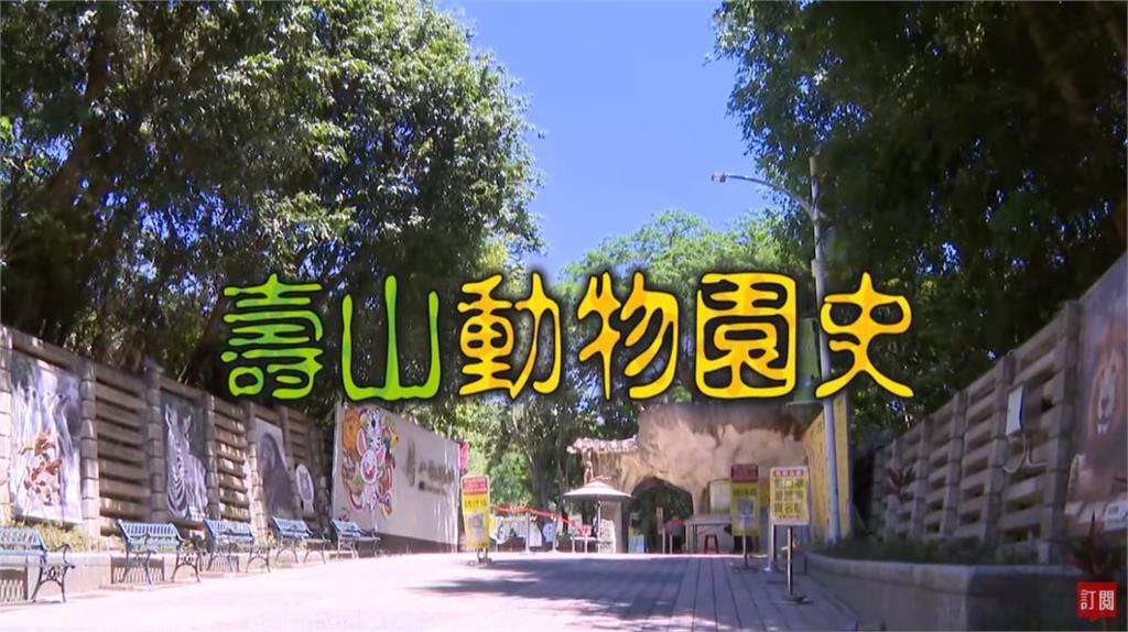 台灣演義/閉園整修打造新面貌 高雄壽山動物園的故事|2021.05