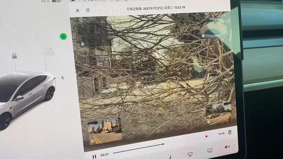 快新聞/開著特斯拉突遇路樹倒塌「眼前都是樹枝」 車主嚇傻:要找時間去收驚
