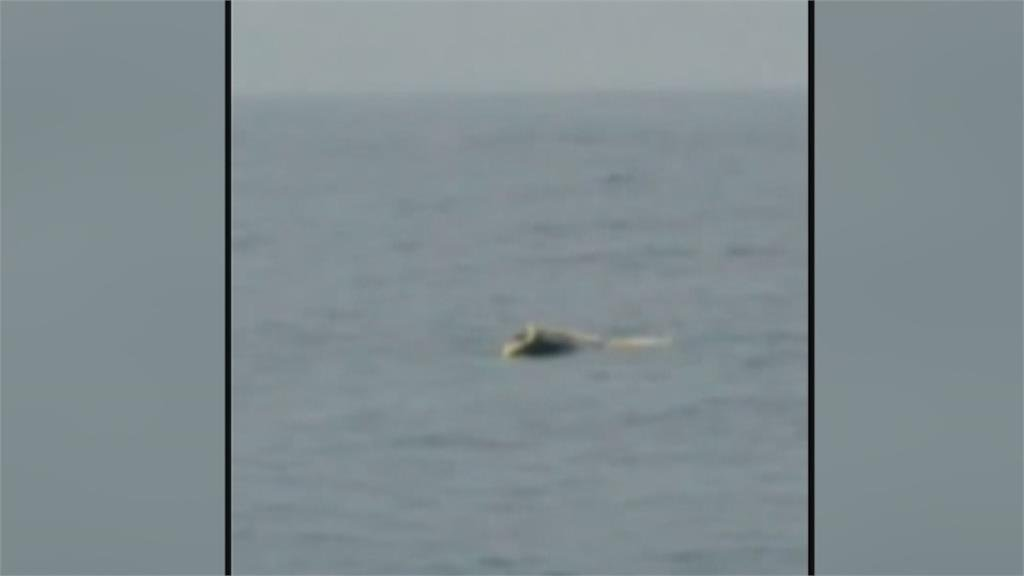 蘇澳三仙台海域漁船碰撞一船沉船長獲救另一船回港待調查