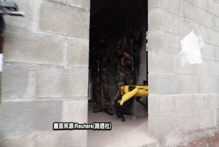 「未來戰」提前來臨?法軍校演習有機器狗大兵