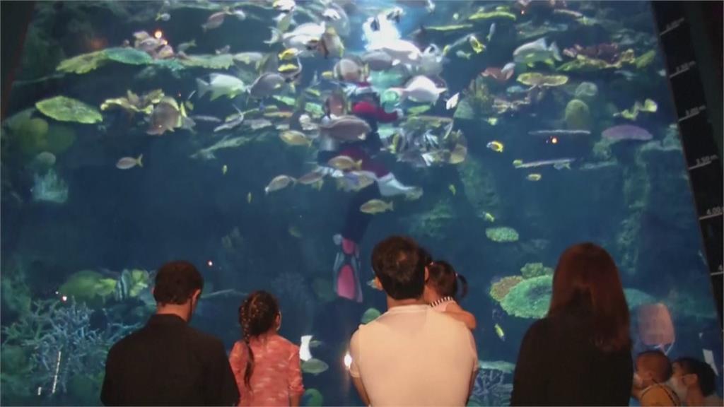 曼谷水族館扮耶老潛水餵魚 家長小孩開心搶參觀