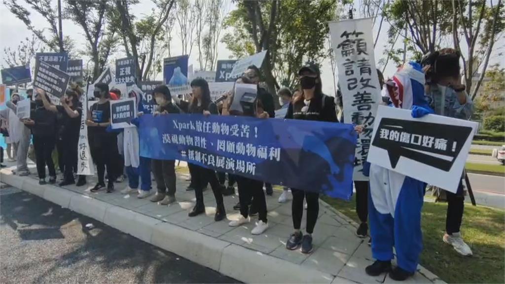 動保揚言抵制Xpark水族館 館方:絕無虐待動物