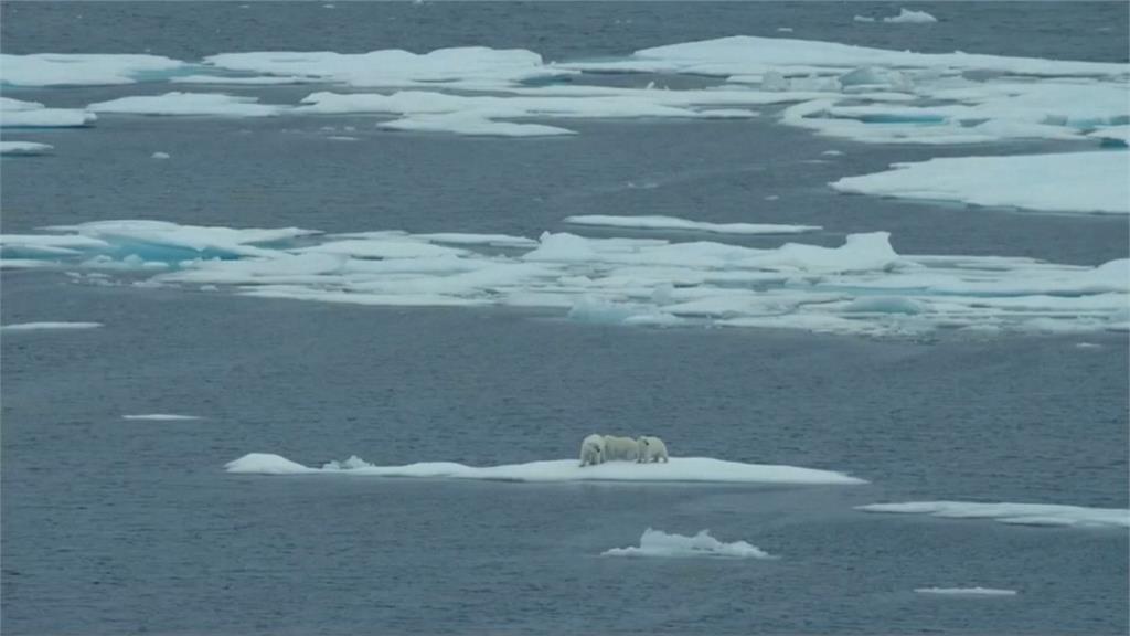 全球暖化速度遠超你我想像!格陵蘭融冰量可覆蓋整個加州