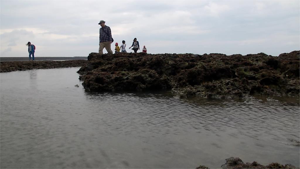 珍愛藻礁公投倒數!尚差逾22萬 學界發起「粉紅風暴學運」