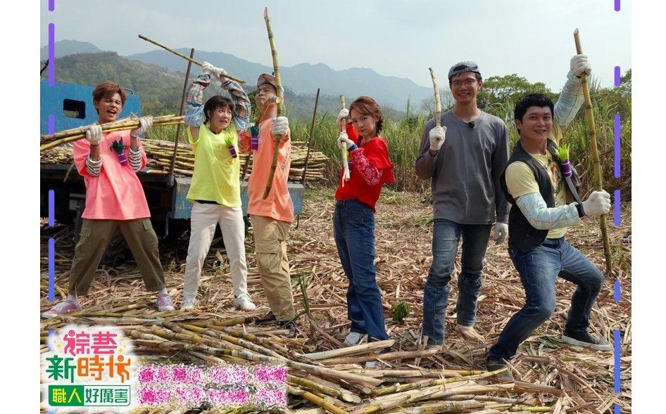 《多情城市》王燦化身「甘蔗man」上《綜藝新時代》揮斧砍柴竟只削下一片樹皮?!
