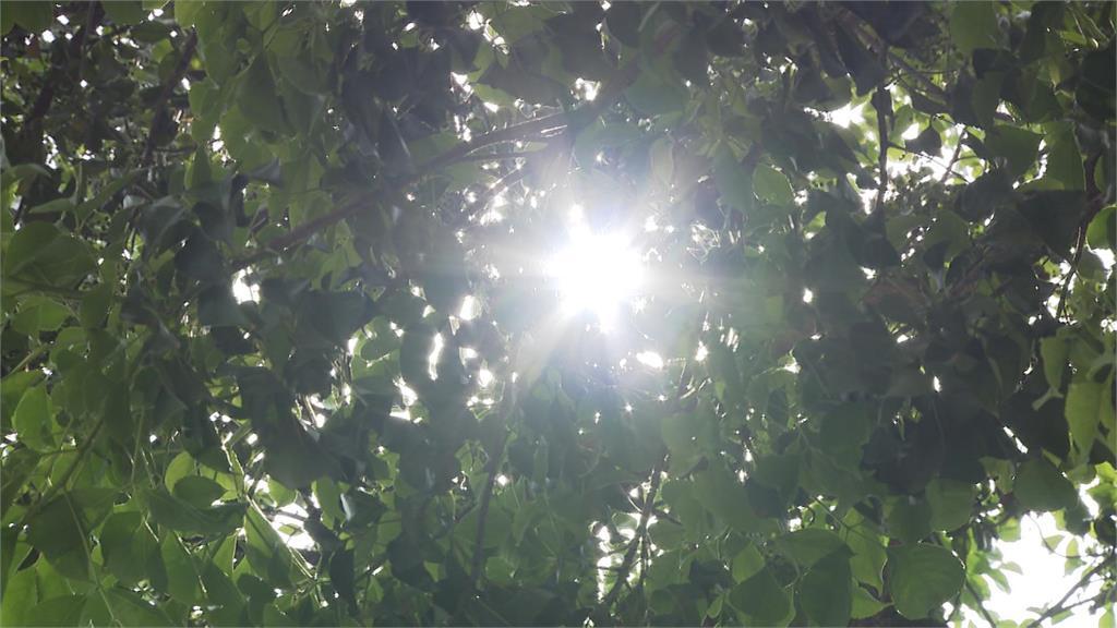 快新聞/端午連假高溫飆36度!防午後雷陣雨 明起中南部有雨