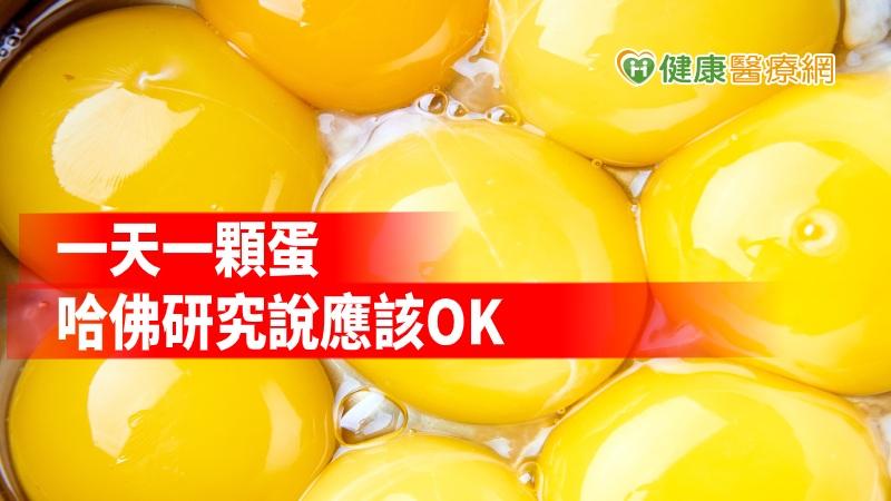 每天吃一顆蛋似乎OK BMJ研究:找無心血管疾病關聯