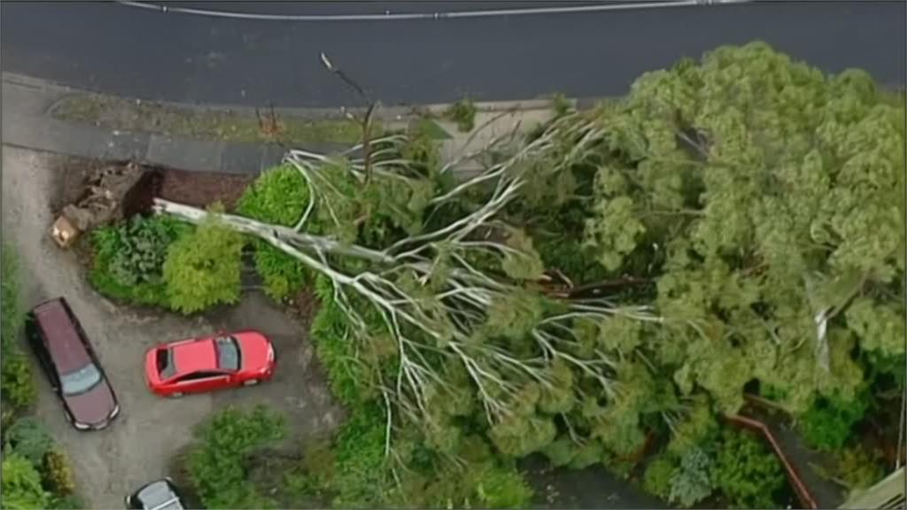 澳洲極端氣候肆虐!狂風暴雨釀洪災 維省發布撤離令