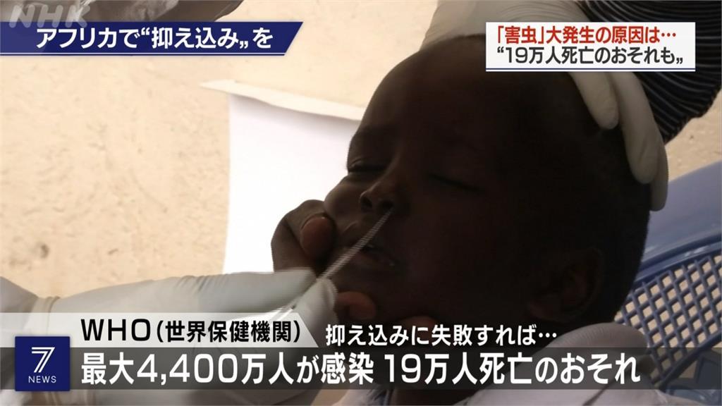 全球/非洲恐成武肺引爆點!最慘恐達4400萬人染疫