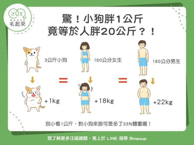 【狗狗健康】驚!小狗胖1公斤,竟等於人胖20公斤?!|寵物愛很大