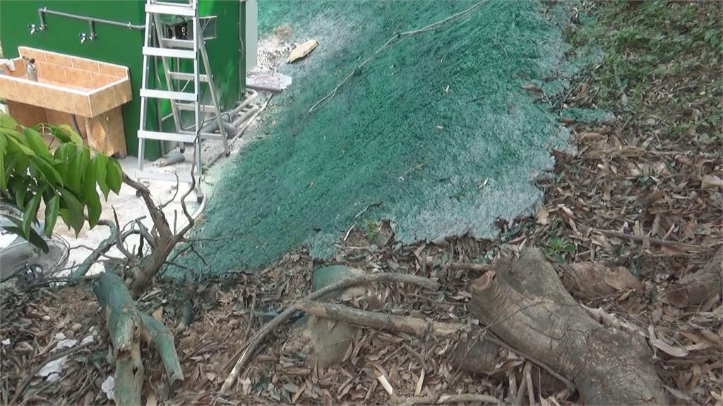 假會! 山坡地打造偽草皮噴上綠漆被揪出 地主恐挨罰