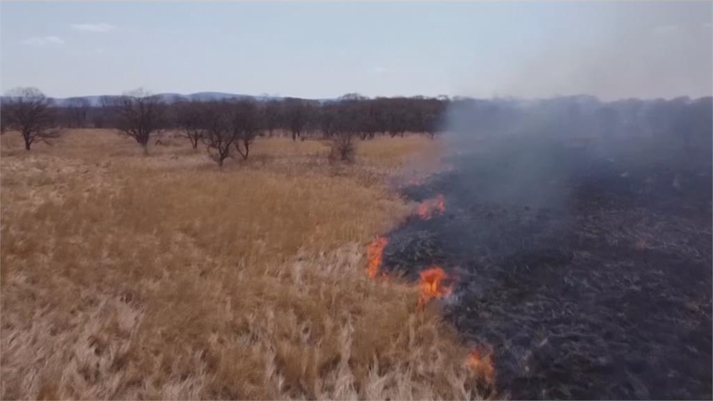 遠東濱海邊疆區森林野火 延燒近1千公頃