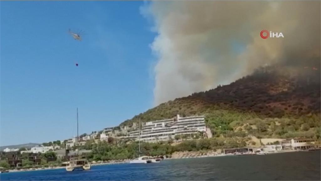 野火狂燒釀6死 土耳其總統:一起與孩童有關