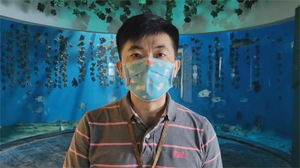 屏東海生館恢復餵食秀 遊客回籠人數增一倍