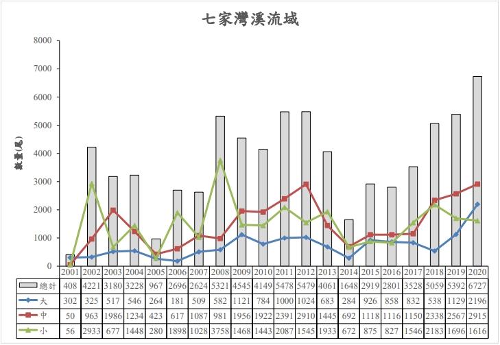 「台灣國寶魚」櫻花鉤吻鮭復育有成 野外普查12587尾創歷史新高
