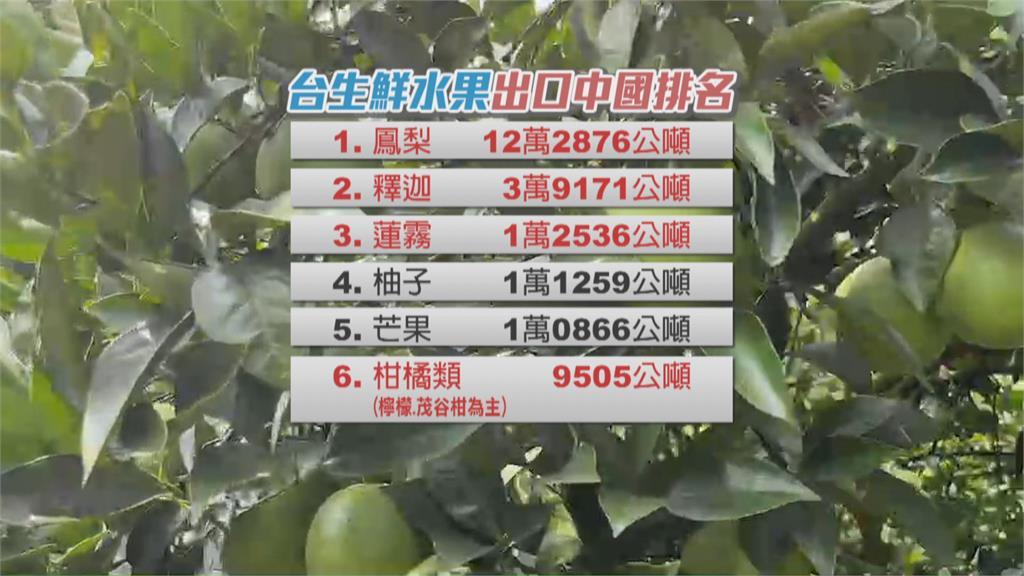 中國下步封殺柑橘類? 學者:明年春節是關鍵