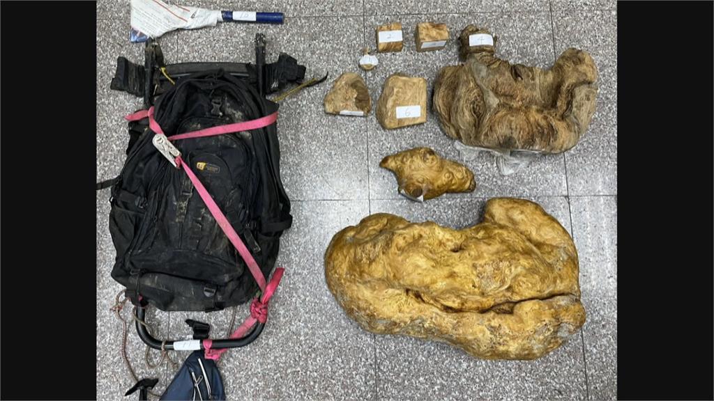 逃逸移工疑盜採林木被誤當獵物射殺 涉案原住民3萬元交保