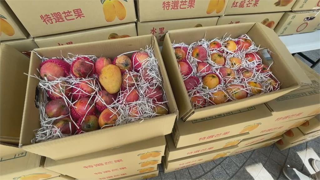 中國再禁釋迦、蓮霧!台灣「水果王國」的危機與轉機│故事台灣