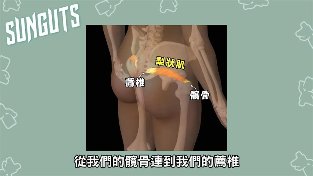久坐屁股就好痛!竟與「這部位」發炎有關 物理治療師2招助舒緩