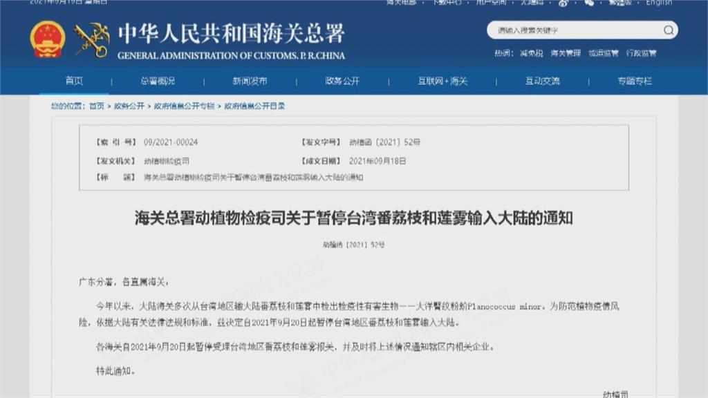 中國禁台灣釋迦、蓮霧 日網友喊:來日本一定大賣