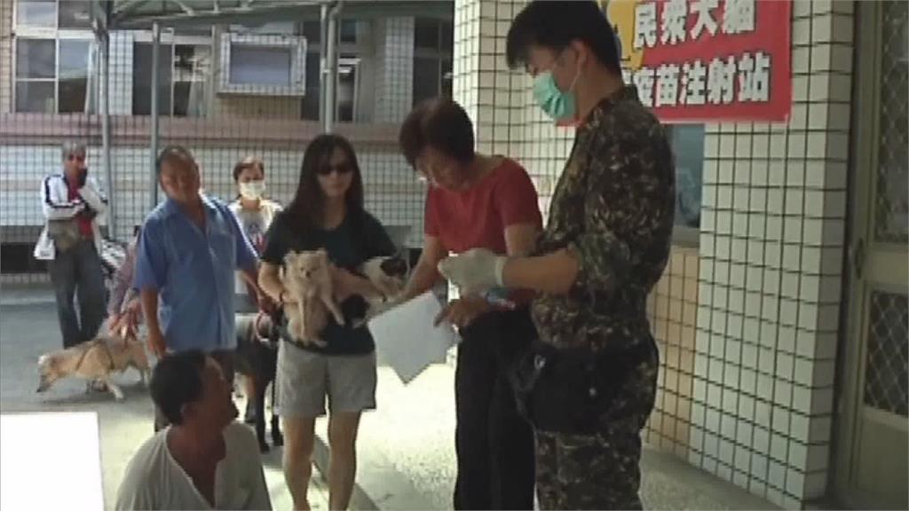 首例野生黃喉貂「狂犬病」不治 台東縣府免費幫寵物疫苗