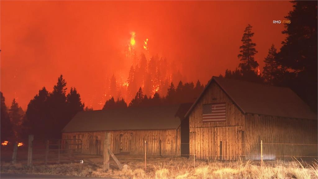 全球/野火與疫情延燒政局 加州州長罷免投票倒數